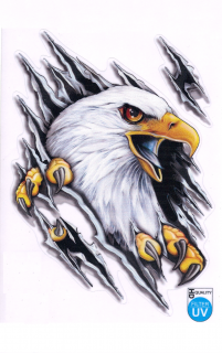 "Nálepka Auto-Tattoo ""Bald eagle"""